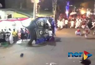 elefante festival hiere a personas